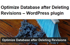 Optimize Database after Deleting Revisionsの設定方法・使い方